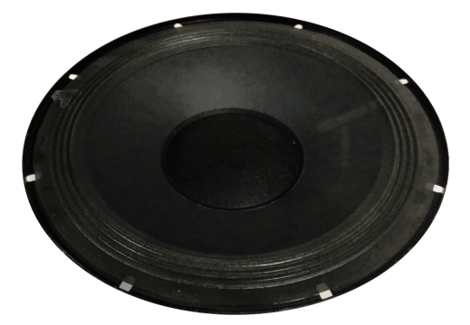 10 Inch 4 Ohm 50 Watt Raw Speaker