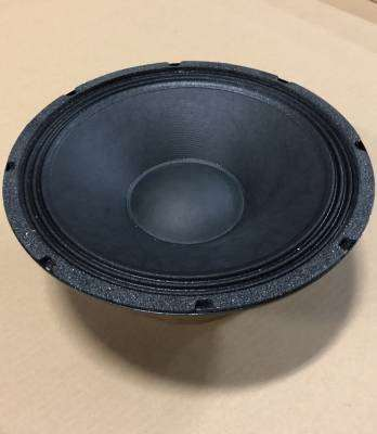 12 Inch 8 Ohm 300 Watt Raw Speaker