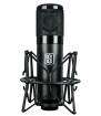 Slate Digital - ML-1 Large-Diaphragm Modeling Mic w/ Shockmount
