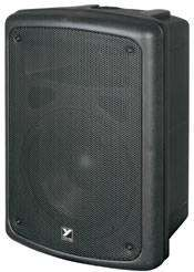Coliseum Series Compact  Speaker - 8 inch Woofer 100 Watts
