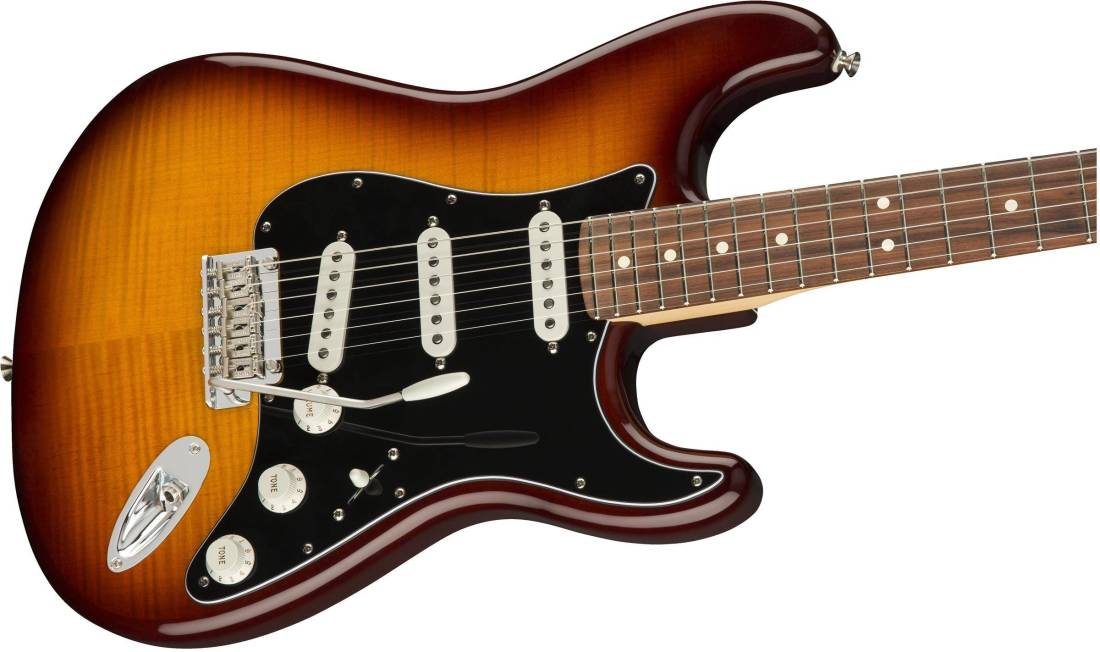 fender player stratocaster plus top pau ferro tobacco sunburst long mcquade musical. Black Bedroom Furniture Sets. Home Design Ideas