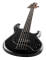 StingRay Special 5-String Bass w/ Ebony Fingerboard - Black