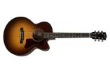 Gibson - 2019 Parlor AG Ltd - Walnut Burst