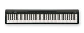 Roland - FP-10 Portable Digital Piano w/Speakers - Black
