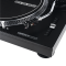 RP-2000 USB Mk2 Professional Direct Drive USB Turntable System