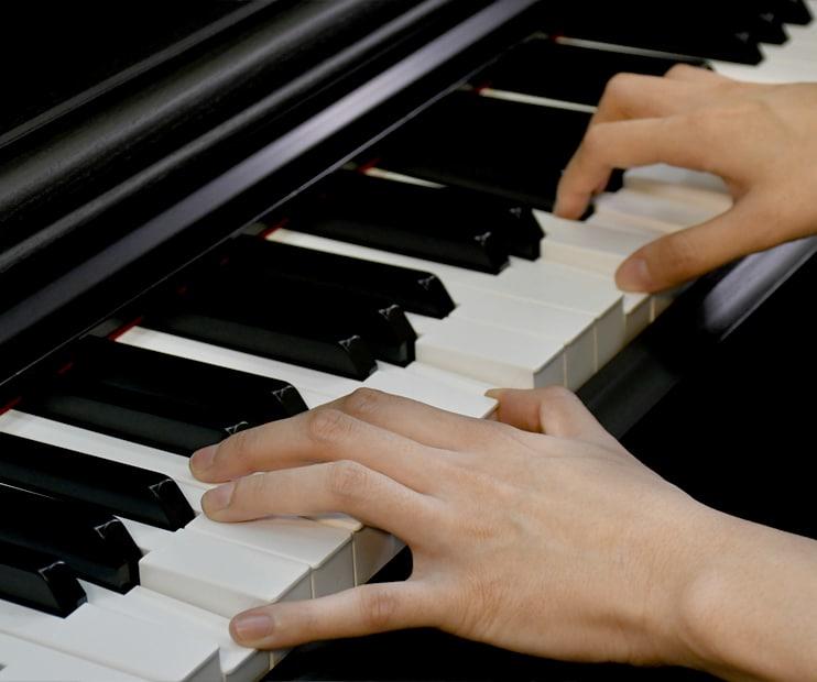 Piano Keyboard In Half Circle Hd Png