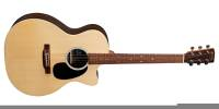 Martin Guitars - Grand Performance X-Series 20th Anniversary Guitar