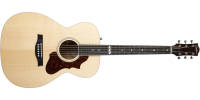 Godin Guitars - Fairmount Concert Hall Acoustic/Electric Guitar - Natural