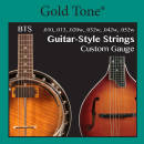 Gold Tone - Banjitar String Set