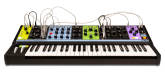 Moog - Matriarch 4 Note Paraphonic Analogue Synth
