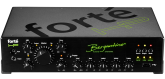 Bergantino - Forte HP Bass Amplifier