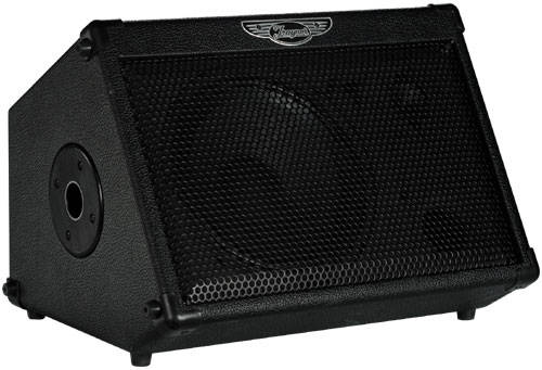 Travel Mate 2-Channel, 50 Watt A/C-Powered Wedge Amp