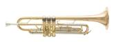 Bb Lacquered Trumpet with Case