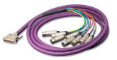 Switchcraft - DB25 Male to 8XLR Female Breakout Cable - 10/3m