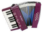 Carlton - Childrens Chromatic Piano Accordion - Purple