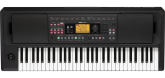 Korg - EK-50L 61-key Entertainer Keyboard (Arranger)