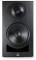 IN-8 8'' Powered Studio Monitor - Black