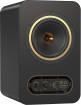 Tannoy - GOLD 5 Powered 200W Dual Concentric Monitor with 5 Woofer