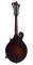 F-Style Mandolin - Solid Spruce Top w/ Case