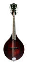 Eastman Guitars - A-style Mandolin Solid Spruce w/Electronics & Case
