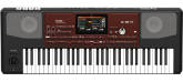 Korg - PA-700 61-Key Arranger Workstation with Touchscreen