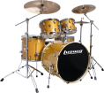 Ludwig Drums - Evolution 5-Piece Drum Kit with Hardware and I Series Cymbals (22, 10, 12, 16, SN) - Gold Sparkle