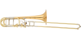 S. E. Shires - Q Series Bass Trombone with F/Gb Dual Axial Flow Valve - Gold Brass Bell