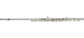 Altus Flutes - 907 Silver Plated Body Flute with B-Foot, Offset-G