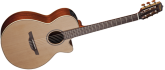 Takamine - Pro Series 3 Acoustic/Electric - FXC Nylon String