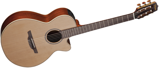 Pro Series 3 Acoustic/Electric - FXC Nylon String