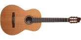 Godin Guitars - Collection Nylon Cedar/Rosewood Acoustic/Electric Guitar