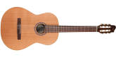 Godin Guitars - Concert Cedar/Mahogany Nylon Acoustic/Electric Guitar Guitar