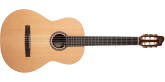 Godin Guitars - Presentation Rosewood Nylon Acoustic/Electric with Q1T