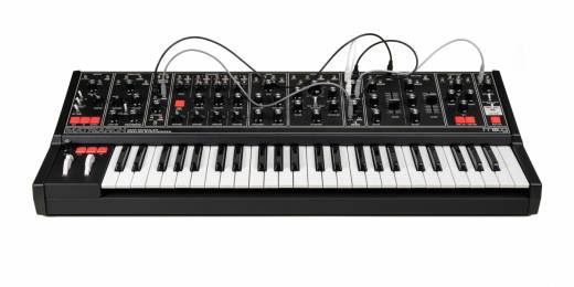 Matriarch Dark 4-Note Paraphonic Analog Synthesizer