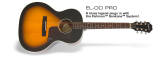 L-00 Pro Acoustic/Electric