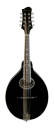 Eastman Guitars - A Style Spruce/Maple Mandolin w/Case - Black