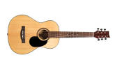 BeaverCreek - 601 Series 3/4 Size Steel String Acoustic