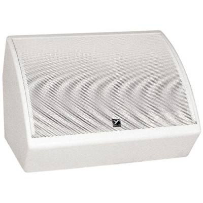 Coliseum Series Floor Monitor- 12 inch Woofer - 150 Watts - White