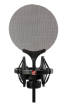 sE Electronics - Isolation Pack with Shock Mount & Pop Filter