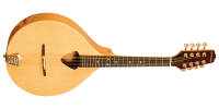 Gold Tone - Traditional Irish Mandola w/ Case