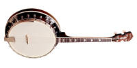 Gold Tone - IT-250R Irish Tenor Banjo with Resonator