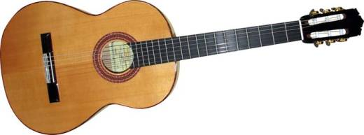 Model FF Flamenco Gutiar - German Spruce Top/Cypress Back & Sides