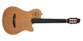 Godin Guitars - Multiac Grand Concert Duet Ambiance HG Electro-Acoustic Guitar -  Natural