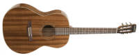 Simon and Patrick - Woodland Pro Folk Guitar - Mahogany