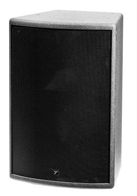 Colisseum 400 Watt Installation Speaker in Black