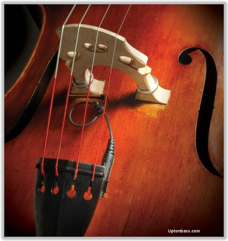 David Gage Strings Realist Transducer For String Bass