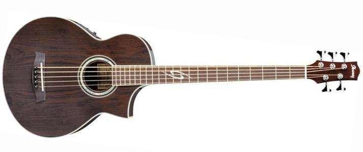Bass String Acoustic Guitar : ibanez ewb205wne 5 string acoustic bass long mcquade musical instruments ~ Hamham.info Haus und Dekorationen