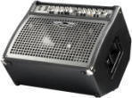 300 Watt Stereo Keyboard Amp / Monitor Combo