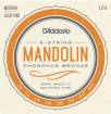 DAddario - EJ74 - Mandolin Phosphor Bronze Medium 11-40