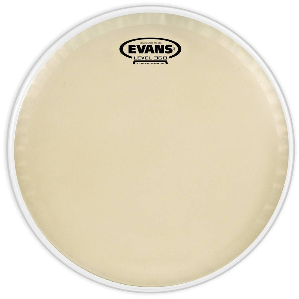 evans cs14ss evans strata staccato 700 concert snare drum head 14 inch long mcquade. Black Bedroom Furniture Sets. Home Design Ideas
